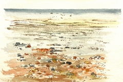 Low tide - Climping