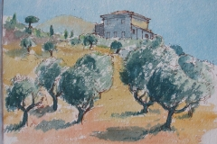 Olives - Gulf of Corinth